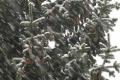 Meteorológovia: V najvyšších pohoriach nie je letný sneh nič výnimočné