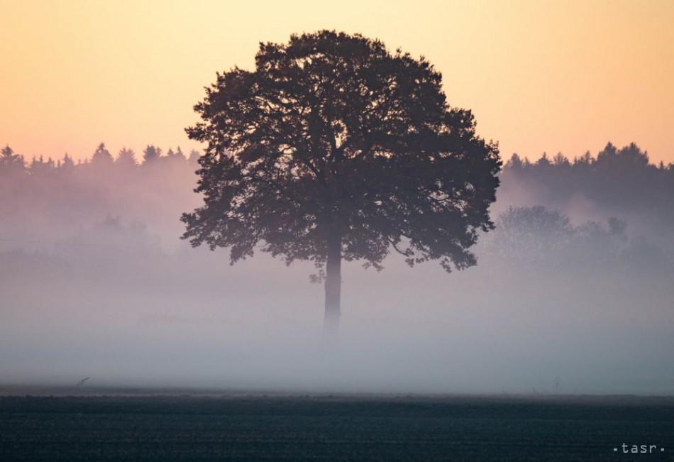 V utorok sa môže po Slovensku plaziť hmla