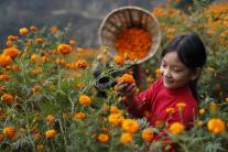 Nepálske dievčatko