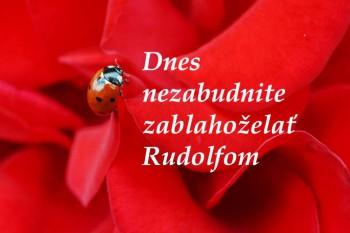Rudolf má pevnú vôľu