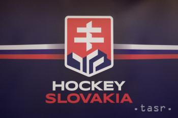 Na reprezentačných dresoch by mali byť slovenské štátne znaky