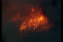 Ničivý lesný požiar v americkom Colorade