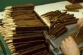 Čína sa vlani stala najväčším trhom pre kubánske cigary