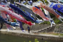 Lietajúce ryby