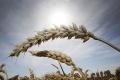 Vysoké teploty potrápia Slovensko dnes aj zajtra