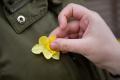 Deň narcisov: Žltý kvet je symbol solidarity s onkologickými pacientmi