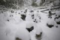 V Slovenskom raji a na Spiši pribudli nové nordic walking trasy