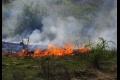Vo Veľkom Horeši horela žatva, predbežná škoda je 20-tisíc eur
