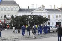 strom, Košice, Vianoce