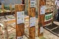 Podbrezová: Gymnazisti budujú svoj náučný chodník