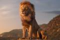 KINO NOVINKY TÝŽDŇA: Leví kráľ a 100 vecí