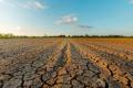 KAUFLAND a LIDL si stanovili ambiciózne ciele na ochranu klímy