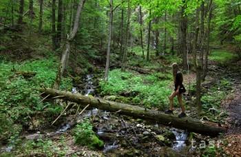 Dokument, ktorý má šťavu: Parkouristi poukazujú na krásy Slovenska