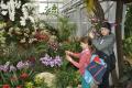 Botanická záhrada v Košiciach zaujala aj školákov CVČ Svit