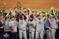 Víťaz Svetovej série 2019 v bejzbale
